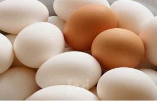 من أجل مصلحة الدجاج... المزارعون ينصحون باستهلاك البيض الأبيض وليس البني