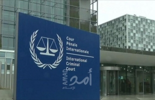 بالفيديو- الجنائية الدوليةتعلن فتح تحقيق كامل بجرائم الحرب الإسرائيلية -القرار باللغتين العربية والانجليزية
