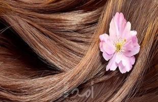 5 ماسكات من البيض لخصلات ناعمة ومفرودة لــ شعرك