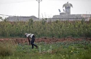 غزة: الإغاثة الزراعية تساهم في تخفيف أزمة المياه عن المزارعين