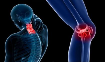 طرق الوقاية من الهشاشة وآلام العظام